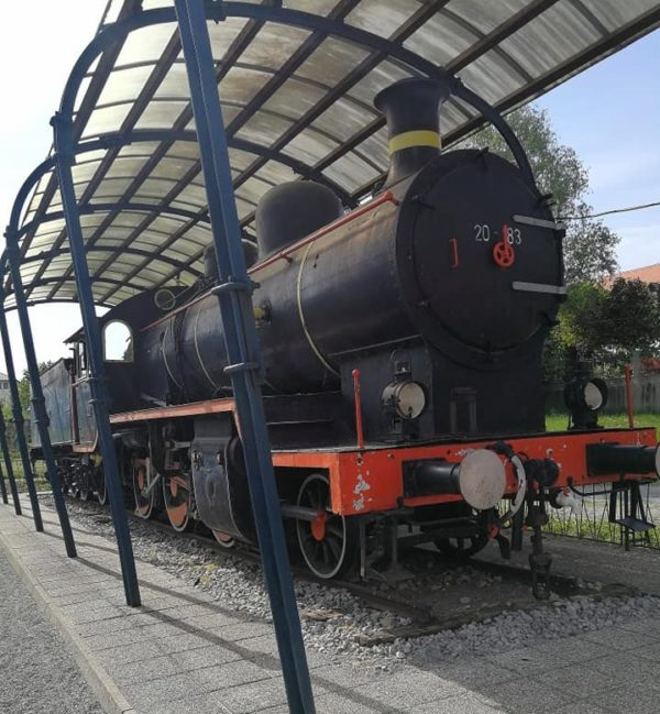 Gremo na vlak, parna lokomotiva v Trebnjem